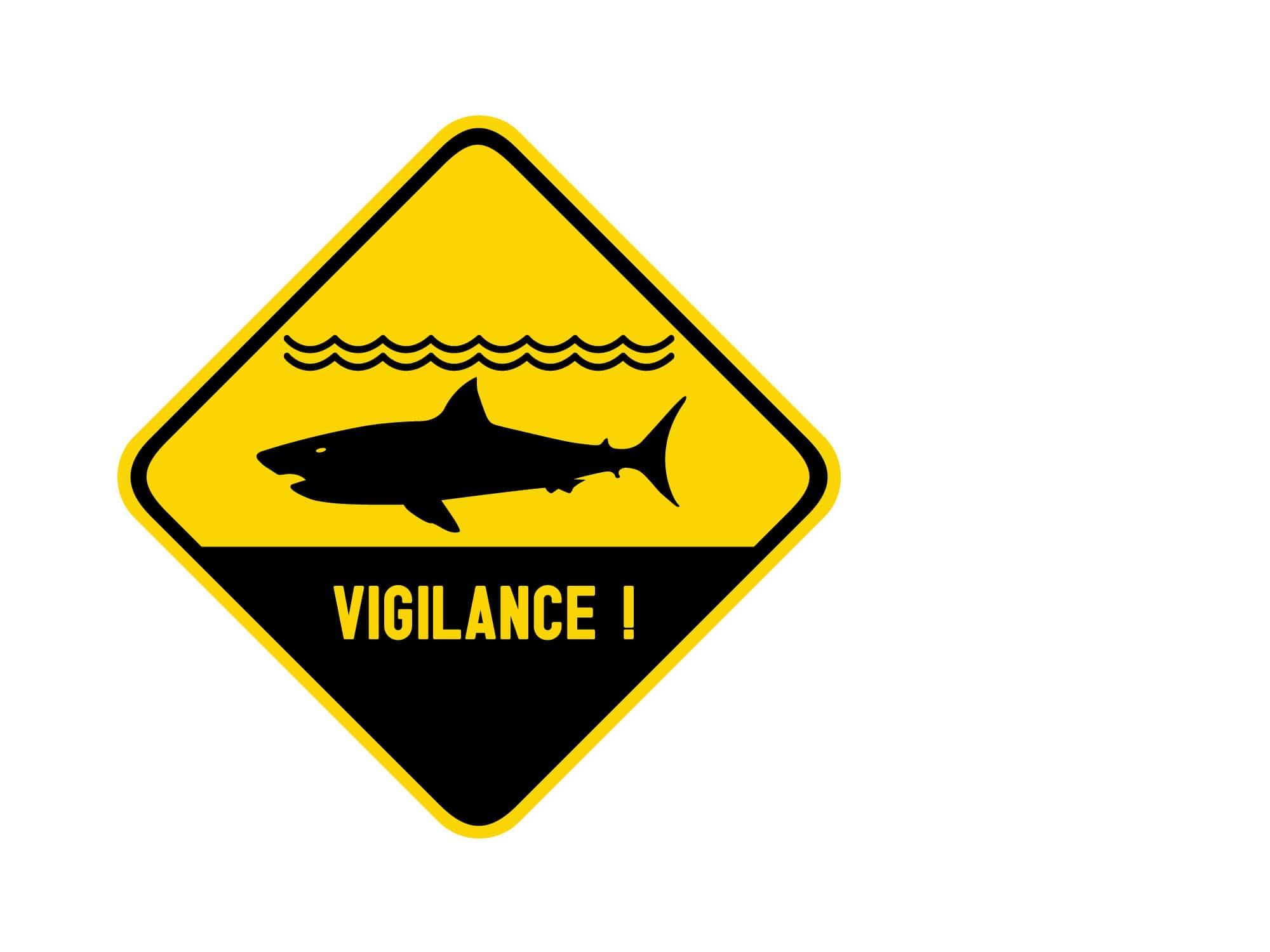 Appel à la vigilance : Danger requins